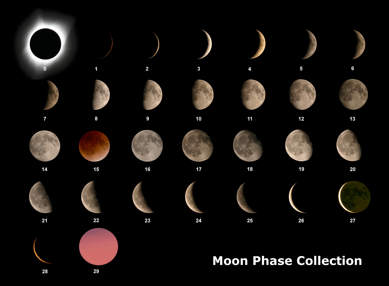 moon phase 3 resize.jpg